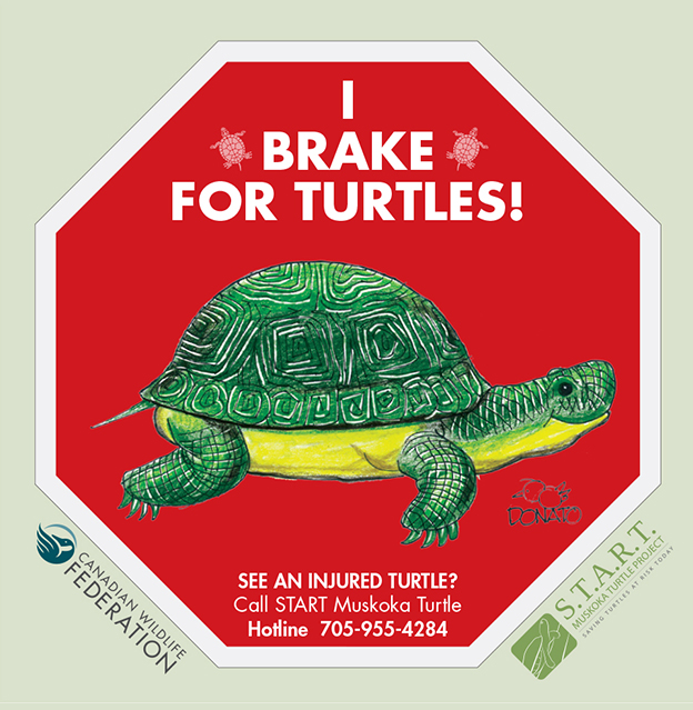 brake for turtles sign