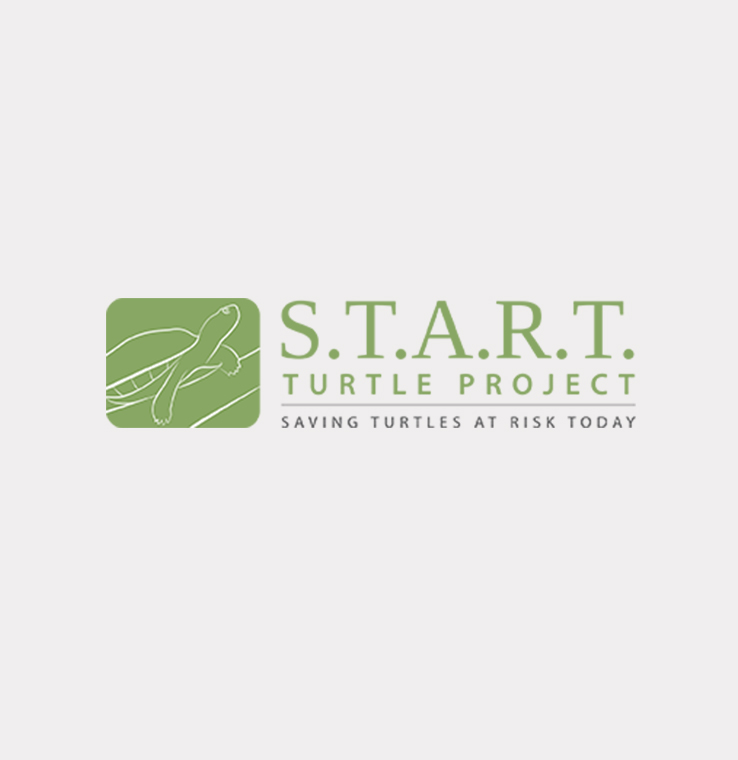 start logo green