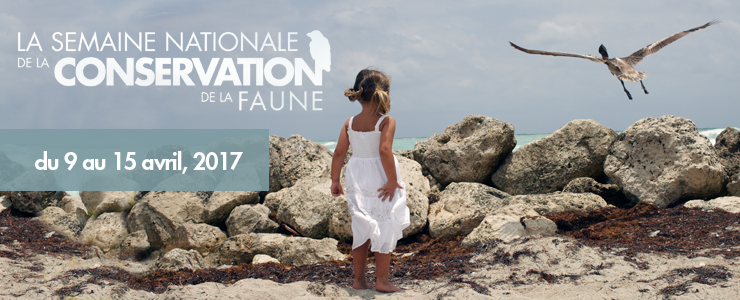 Semaine nationale de la conservation de la faune