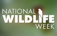 National Wildlife Week logo