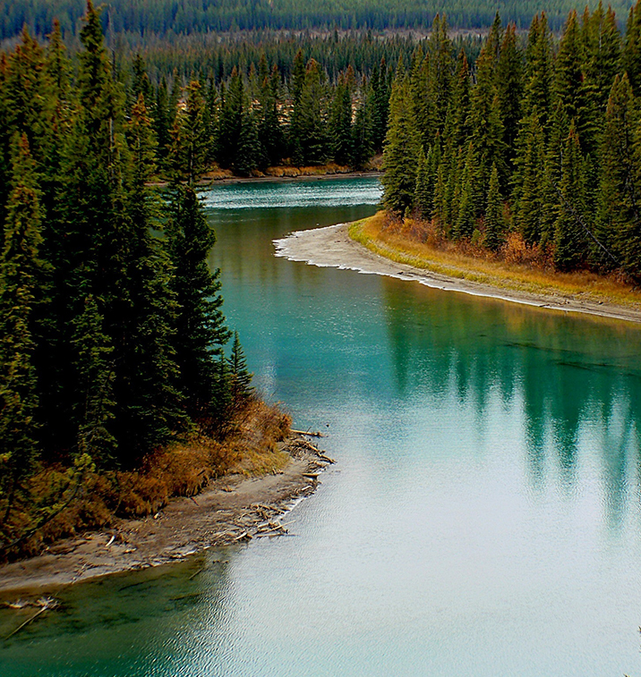canadian river and forest