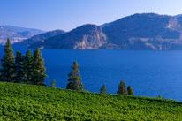 Okanagan valley  British Columbia