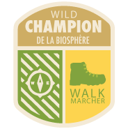 Wild champion badge