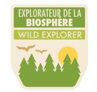 Wild explorer badge