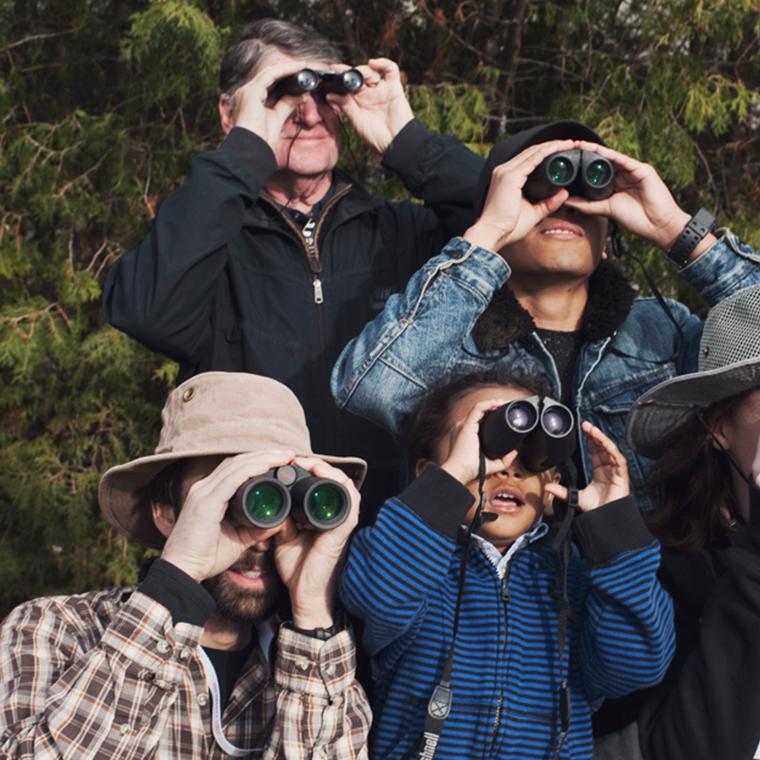 people with binoculars