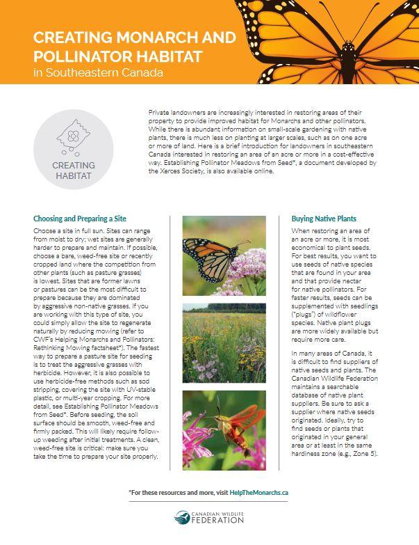 pollinator habitat thumb