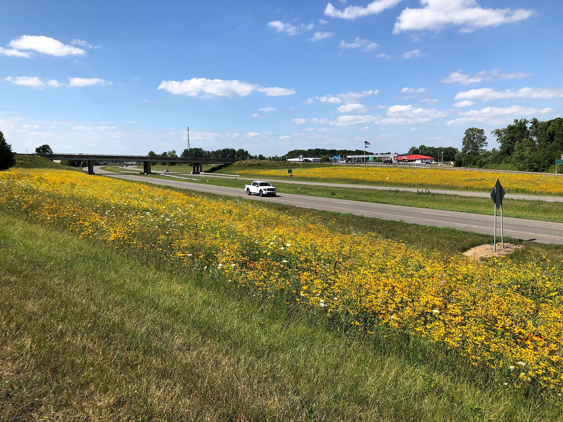 pollinator pathway roadway