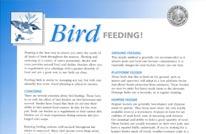 bird feeding handout 206