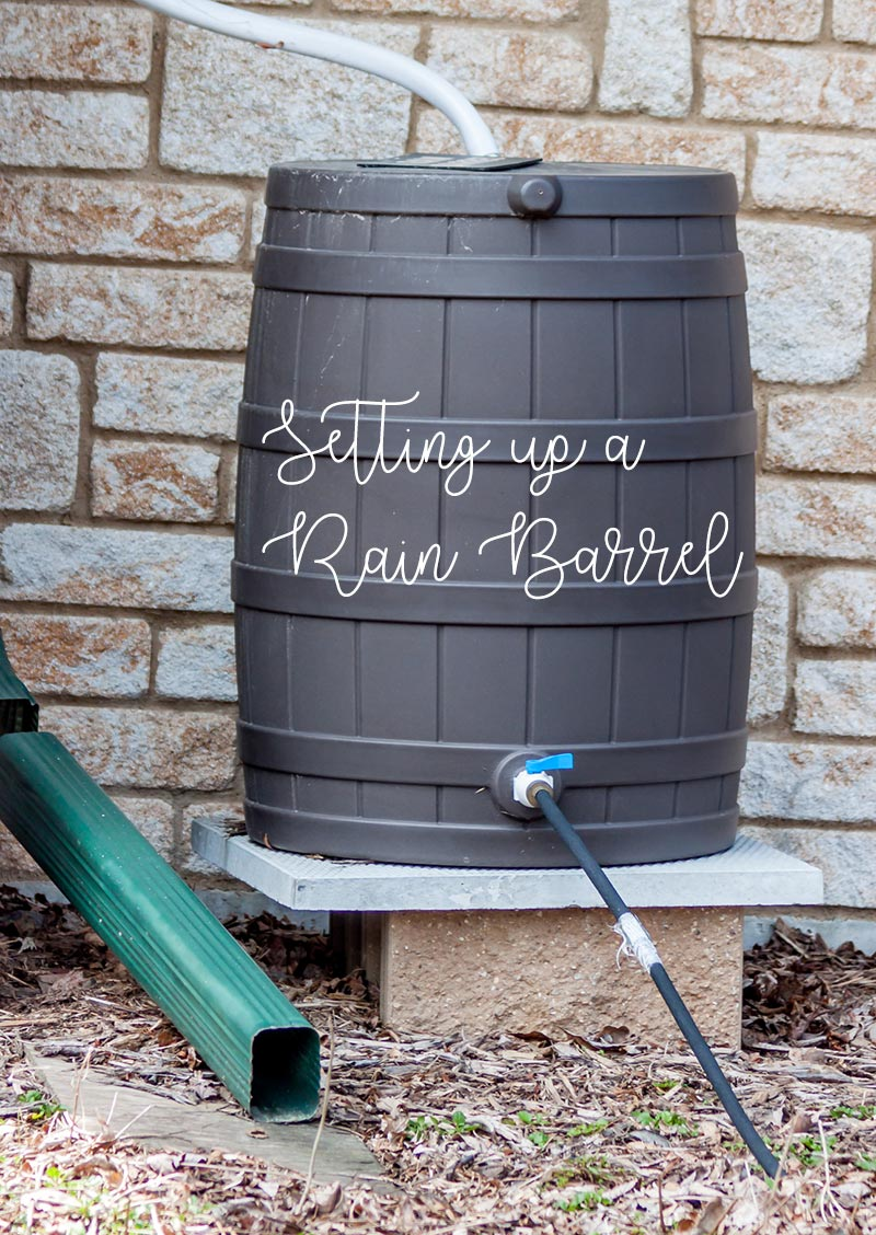 setting up a rain barrel pinterest