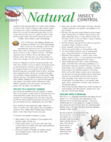 Insect Control Handout