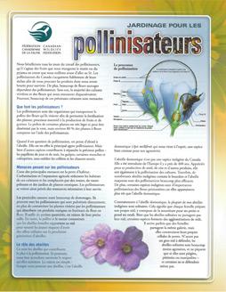 PollinatorsFR