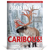 bio current issue