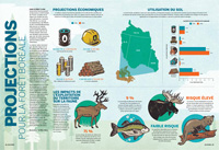 Infographic on the boreal forest