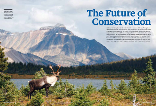 The future of conservation 520