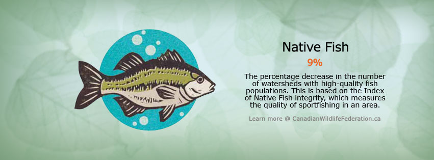 Native fish status update banner