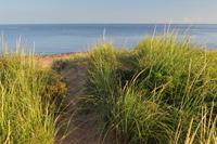 dunes  200
