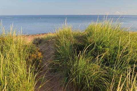 dunes 480