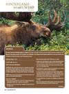 HWW Moose