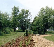 Copernicus garden