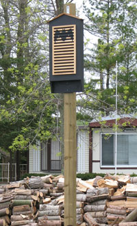 Bat house installed on a post