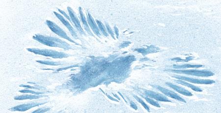 Winter tracks - owl