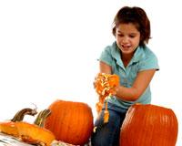 Pumpkins / Citrouille