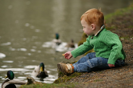Boy sitting by the water with ducks