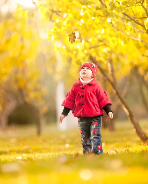 Child watching a leaf fall in autumn