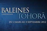 French movie banner