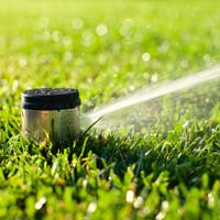 Lawn sprinkler watering lawn
