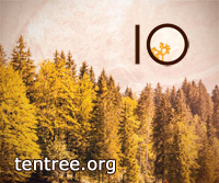 Ten Tree Logo