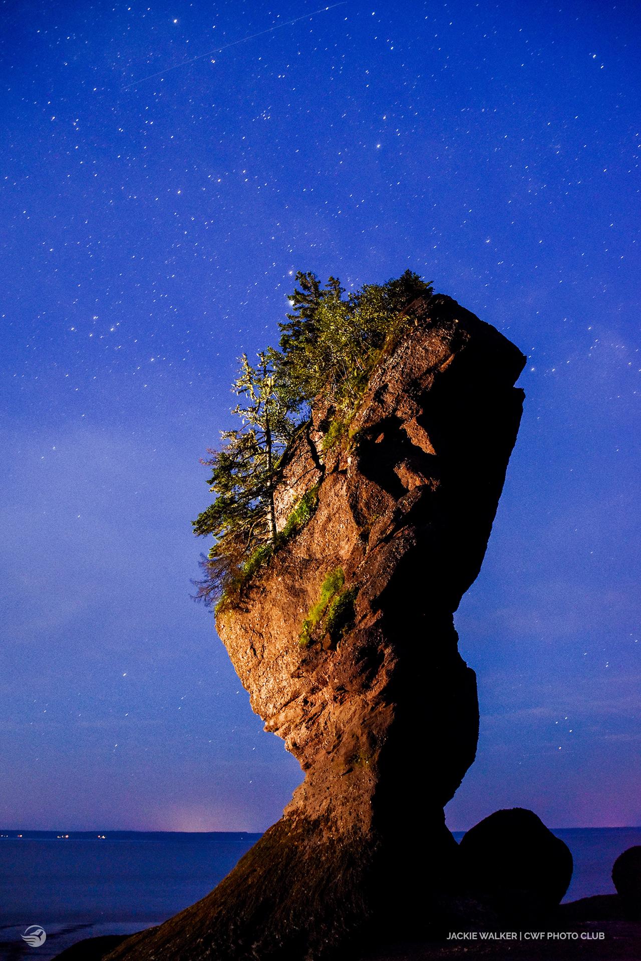 hopewell rock