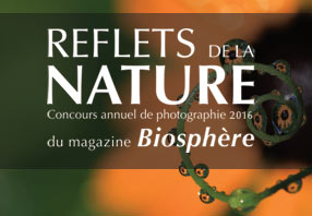 Reflections of nature contest logo in french