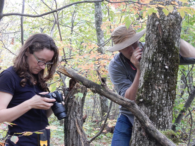 Frost Lichen scientists