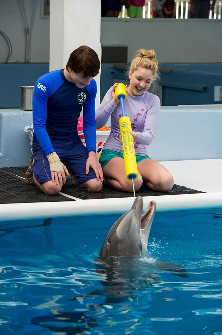 Actors with dolphin