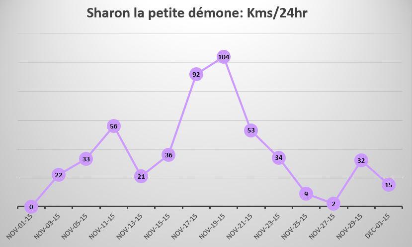 Sharon's kilometres per hour swam graph