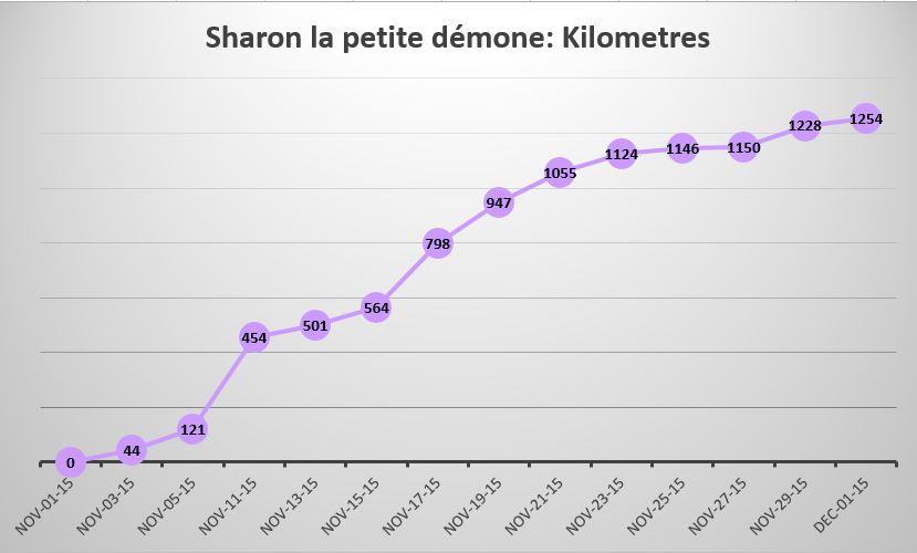 Sharon's travels in kilometres