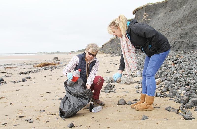 shoreline cleanup