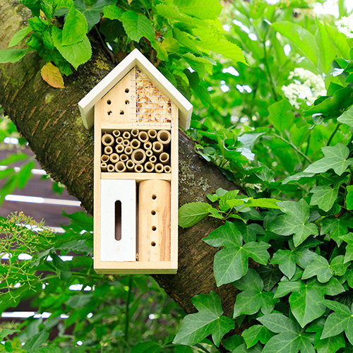 insect house in tree