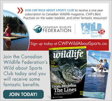 Join the WILD about Sports Club today