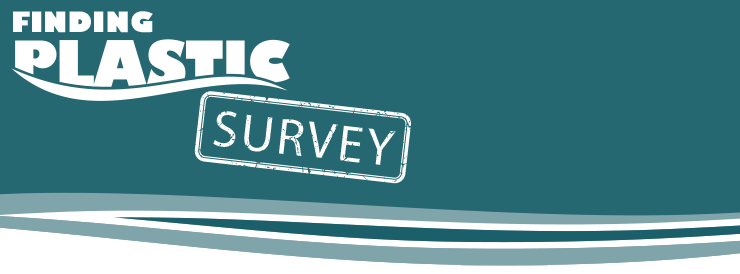survey page header