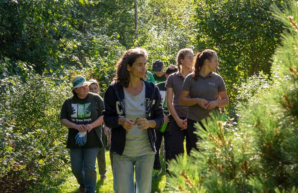 sarah garden tour