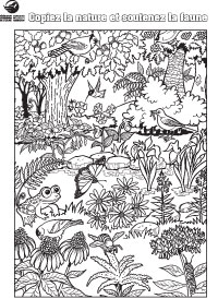 colouring-pages-V2_FR-2-200