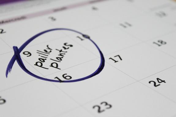 calendrier de jardinage