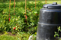 composter in vegetable garden