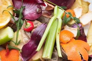 kitchen scraps for the composter