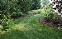 CWF's lawn is green with minimal maintenance