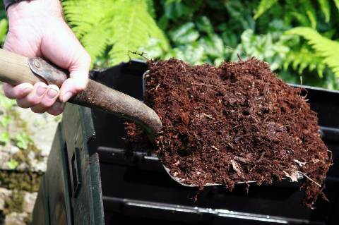 compost is a great soil amendment and fertilizer