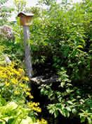 Garden Mission 3