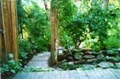Small Garden 1